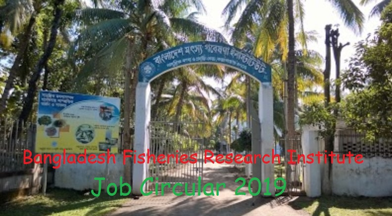 Photo of Bangladesh Fisheries Research Institute (BFRI) Job Circular 2019