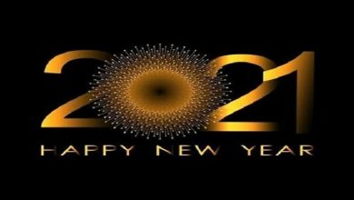 Photo of Happy New Year 2021 SMS, Wishes, Messages And Status !